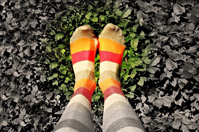 nohy, lístky, barevné ponožky