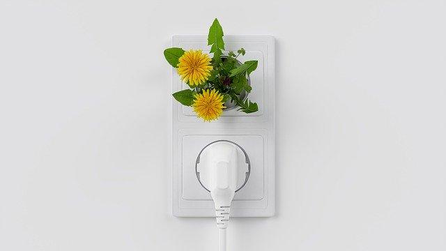 bílá elektrická zásuvka s přístrojem a květinou