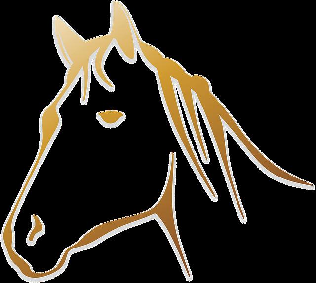 kreslená silueta koňské hlavy
